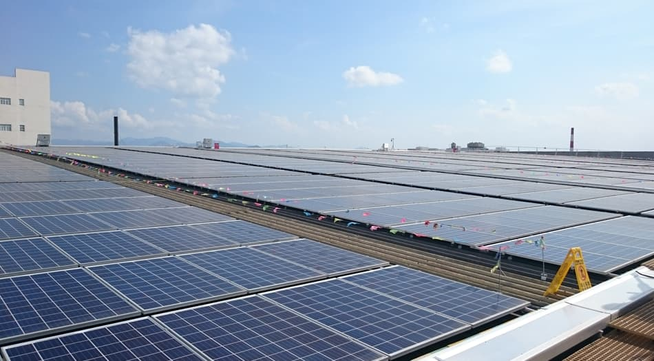 Solar panels at Lee Kum Kee photovoltaic power station.