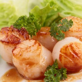 Recipe Seared Scallops with Sauteed Napa Cabbage and Shitake Mushrooms S